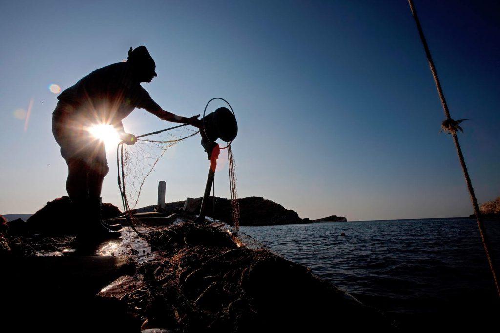 Najpoznatiji Kurnatari su otac i sinovi Ježine, koji žive iskonskim mediteranskim životom – od mora i kamena