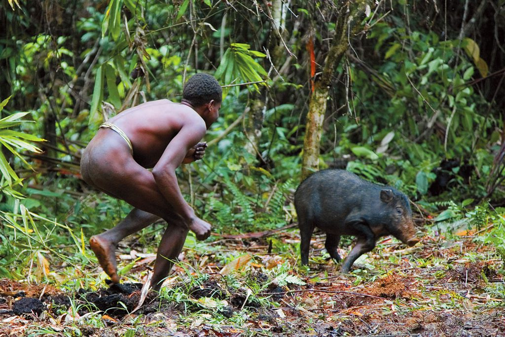 They raise pigs and use them for paying dowry or for compensation after conflicts.